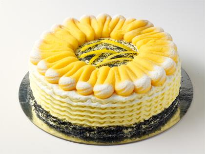 "TC 9""  Medium Flourless Lemon & Poppyseed Cake"