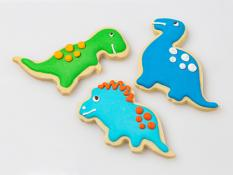 CC Large Kids Dinosaurs Iced 24x26g