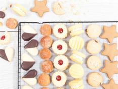 SBN Corporate Cookies (56 Units)