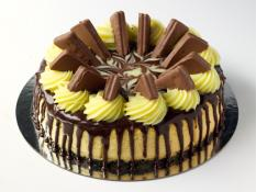 "TC 12"" Cheese Cake Tim Tam"