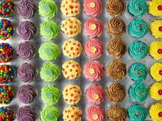 TC Cupcakes Large Standard Assorted