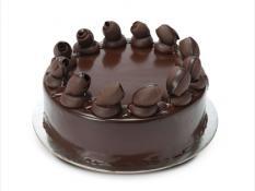 "TC 12"" Mud Cake"